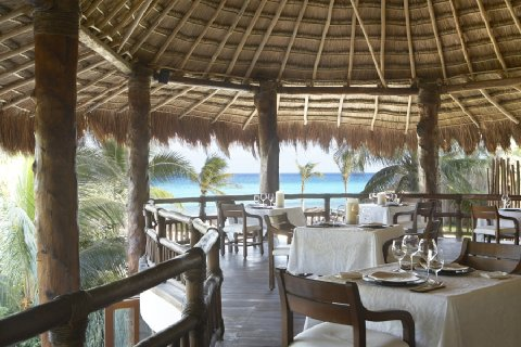 Gourmet Dining at The Tides Resort, Riviera Maya, Mexico